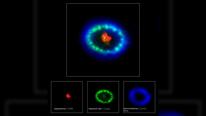 Neutron star formed in front of astronomers 88