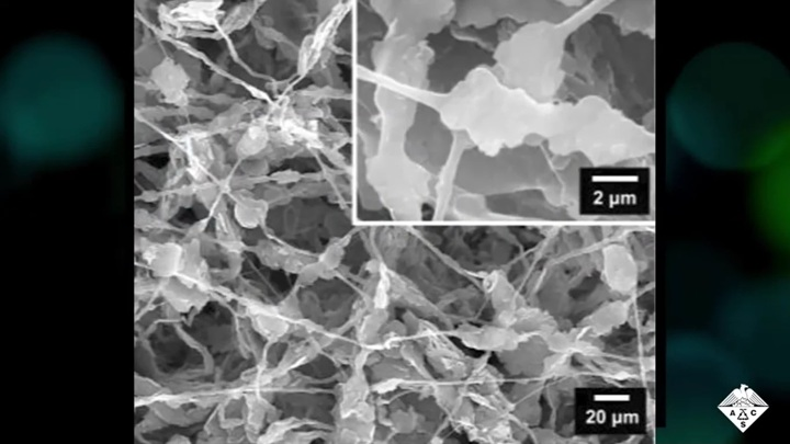 Like naked: new fabric will provide cooling without air conditioning 2