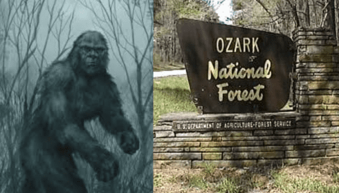 Bigfoots attacked tourists in the Ozark National Park, Arkansas 102