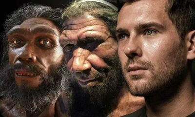 Traces of an unknown ancestor found in the human genome 89