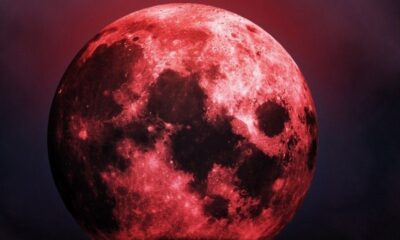 The end of the world will come in November 2020. Astrologers named the moon as the cause of the next doomsday 96