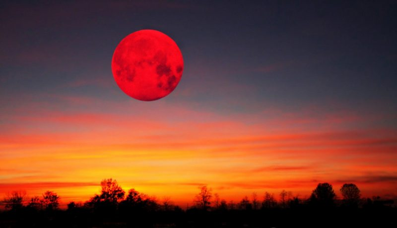 The end of the world will come in November 2020. Astrologers named the moon as the cause of the next doomsday 2