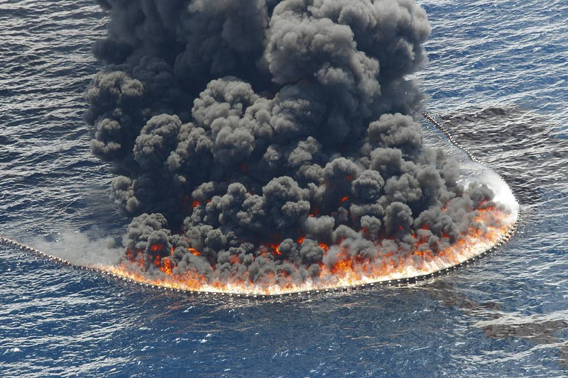 The world's oceans are under attack from man-made disasters 4
