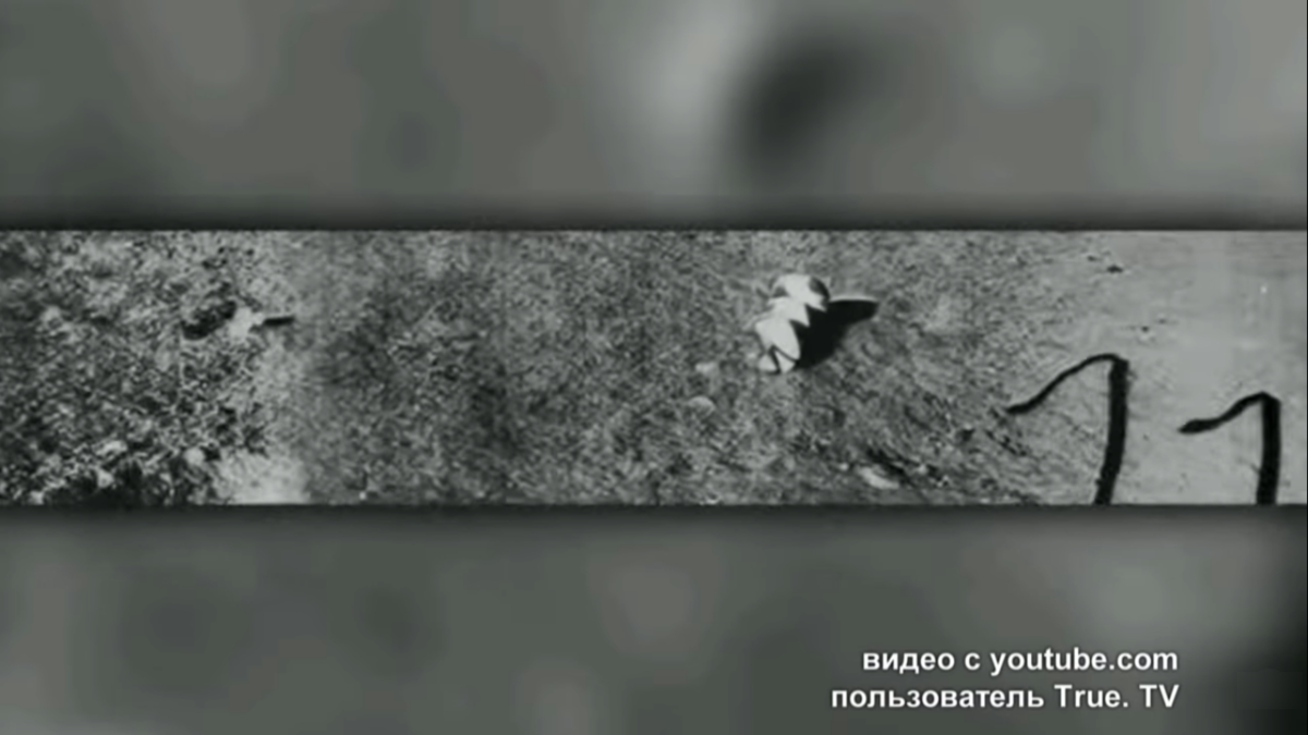 Exploring a strange satellite: Iron arguments of Soviet scientists about the purpose of the moon 5