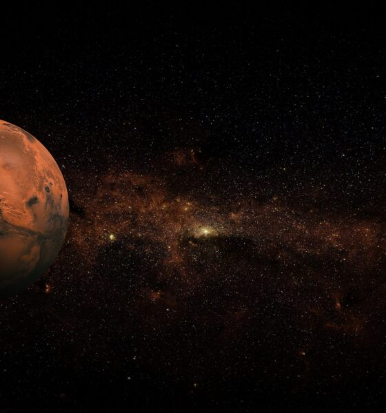 Intrusive buzzing. The Perseverance rover recorded the space sounds of its flight to Mars 87
