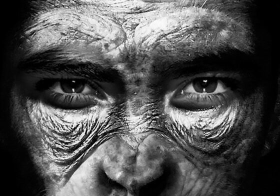 Why are Spanish scientists working to create a chimera of man and ape in China? 86