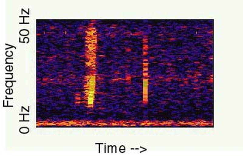 """Spectrogram """"Bulka"""" / © NOAA"""