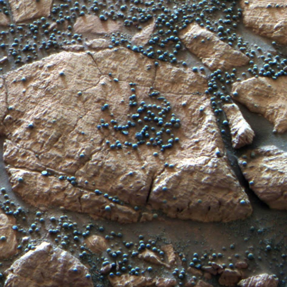These loose, BB-sized, hematite-rich spherules are embedded in this Martian rock like blueberries in a muffin and released over time by erosion.