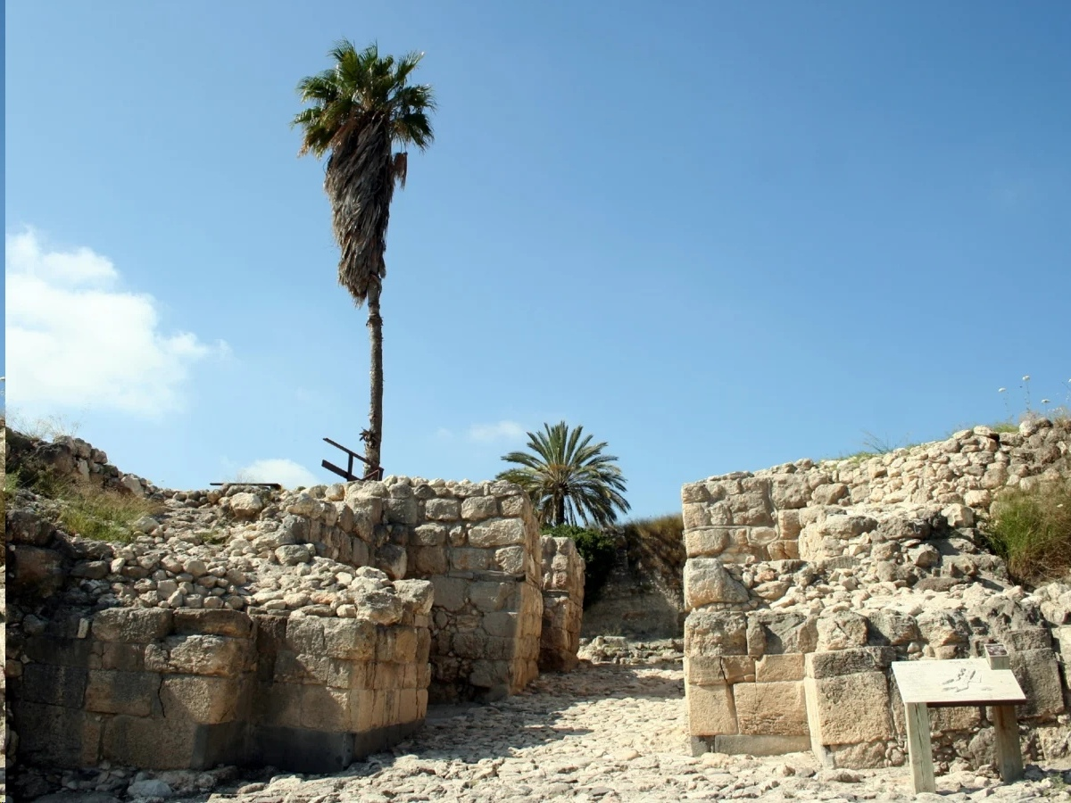 Tel Megiddo: welcome to the biblical city of Armageddon 105