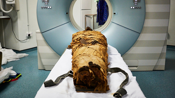 Talking mummies and time travel: The weirdest scientific discoveries of 2020 3
