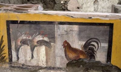 The ancient Romans also loved take-away food. For the first time, a hot fast food restaurant unearthed in Pompeii 32