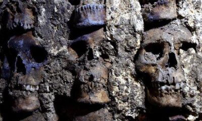 "Archaeologists find a ""wall of skulls"" in Mexico City, the remains of captives and sacrifices to the Aztec god 15"