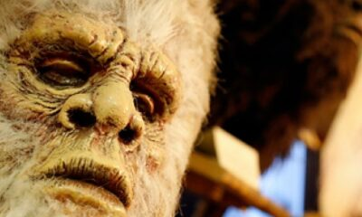 Four friends were scared by a Bigfoot-like creature 47