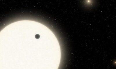 KOI-5Ab, the curious planet that orbits in a system of three suns 6