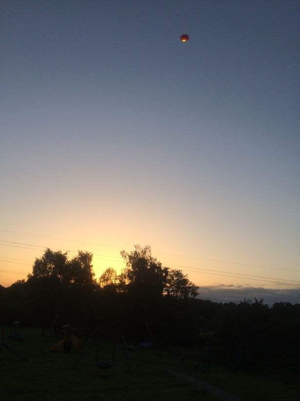 UFO, praying mantis, UK, alien,