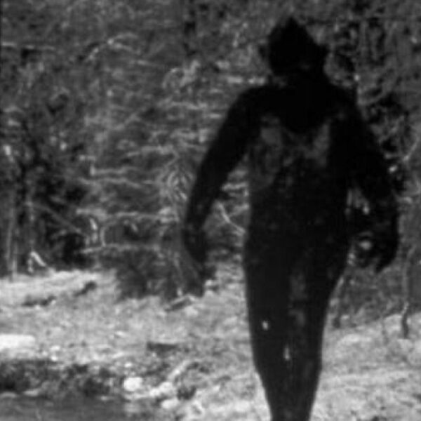 A woman met a seven foot Bigfoot in an English park. This encounter influenced her entire future life 2