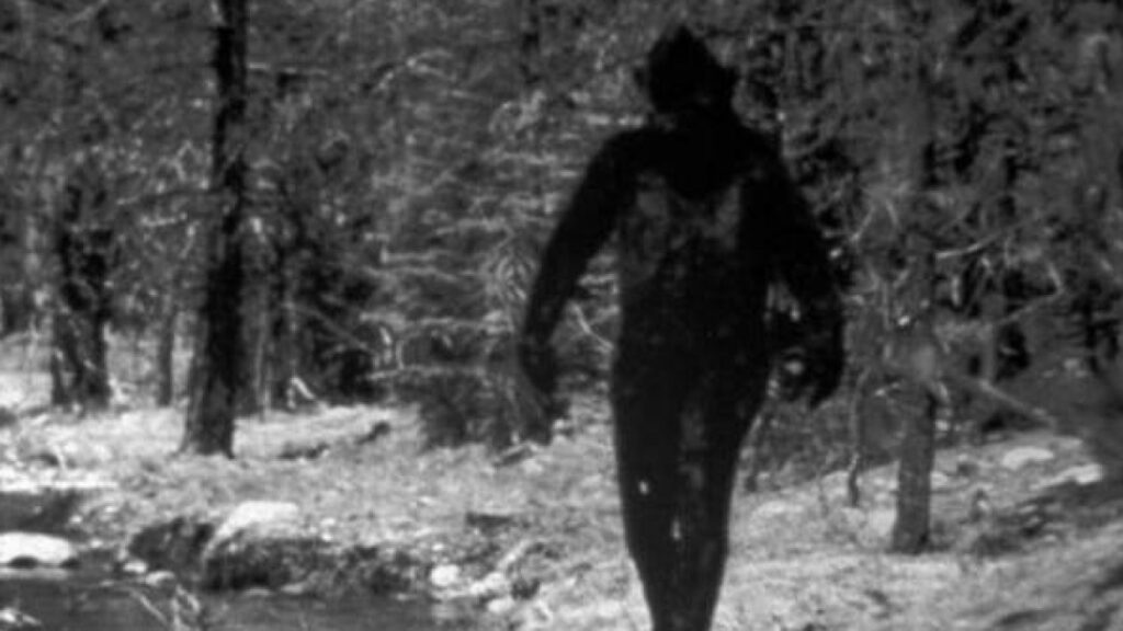 A woman met a seven foot Bigfoot in an English park. This encounter influenced her entire future life 1