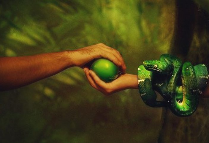 """Was there an apple? Scientists are finding out what could be the """"forbidden fruit"""" of Eden 1"""