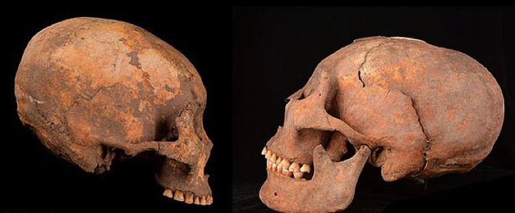 In ancient Chinese graves, every second skull is egg-headed.