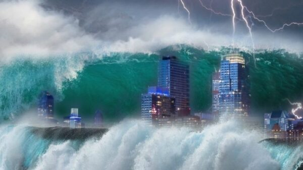 Natural disasters and demographic crisis: What Vanga predicted for 2021 17