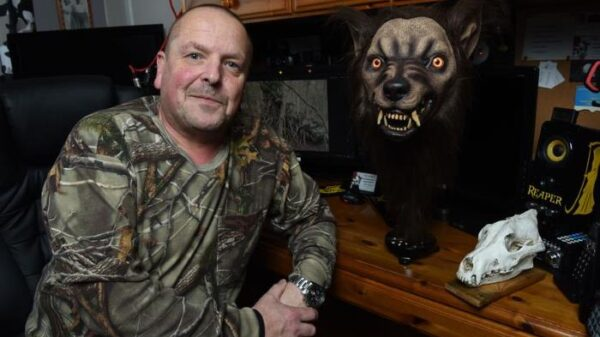 """A wolf the size of a car"": a 30-year-old hunt for a werewolf still goes on 11"