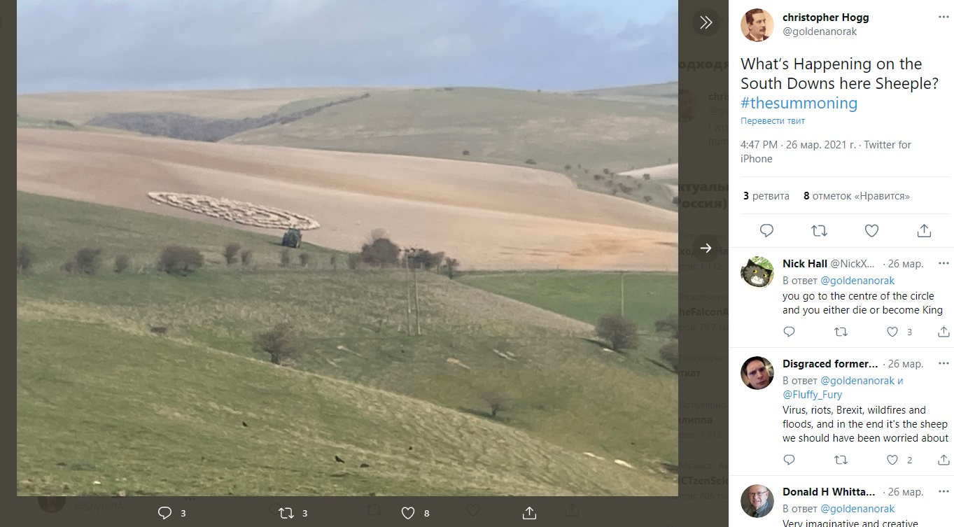 No crop circles and UFO tracks? Hundreds of sheep for no apparent reason walked in circles in a British field 2
