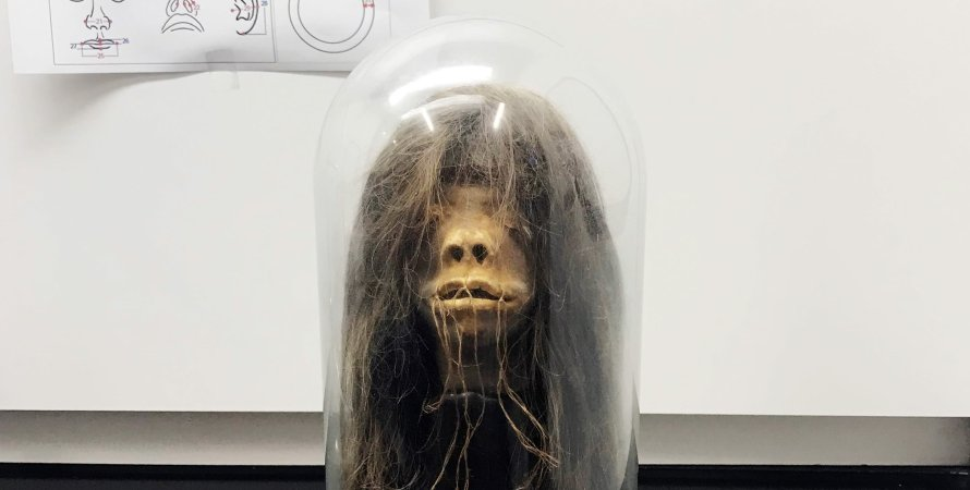 """The fake dried head from the """"Wise Blood"""" horror movie turned out to be a real shriveled head 1"""