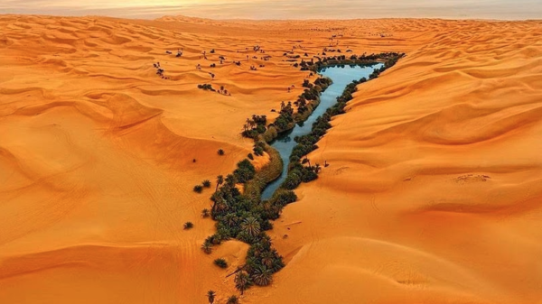 Sea in the Gobi Desert: the ancient home of the Sons of God 10