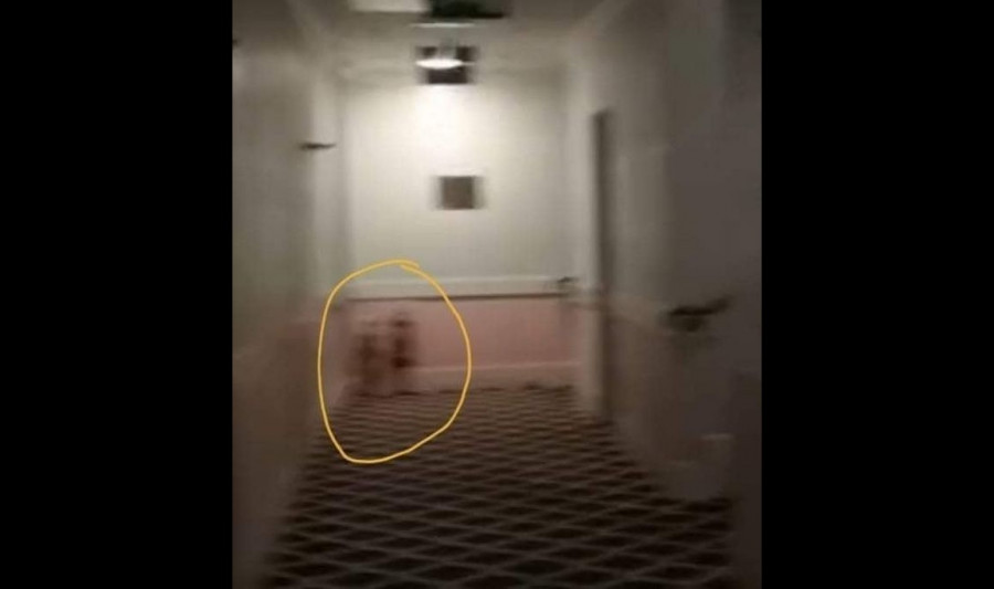 """ForPost - News: Ghostbusters have found """"twins from"""" Shining """"in the hotel"""