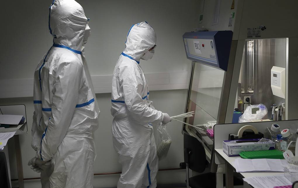 """""""They were removed on purpose"""": scientists recovered data on the SARS-CoV-2 genome 1"""