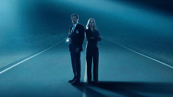 Bizarre MUFON case in California: X-Files on one of the Tracks 8