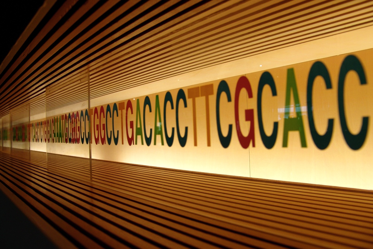 Biologists found DNA fragments of unknown nature in soil 2