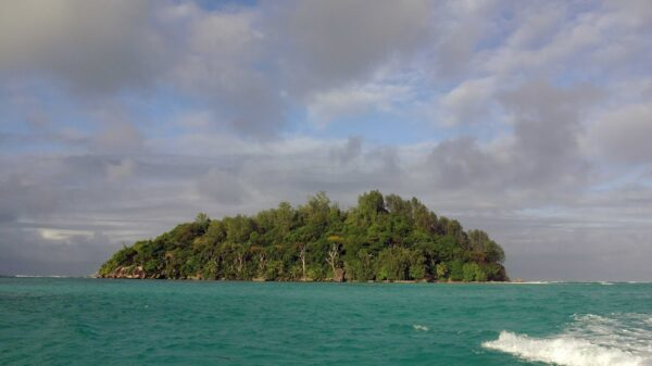New Robinson: a man bought a desert island and created a piece of paradise 13