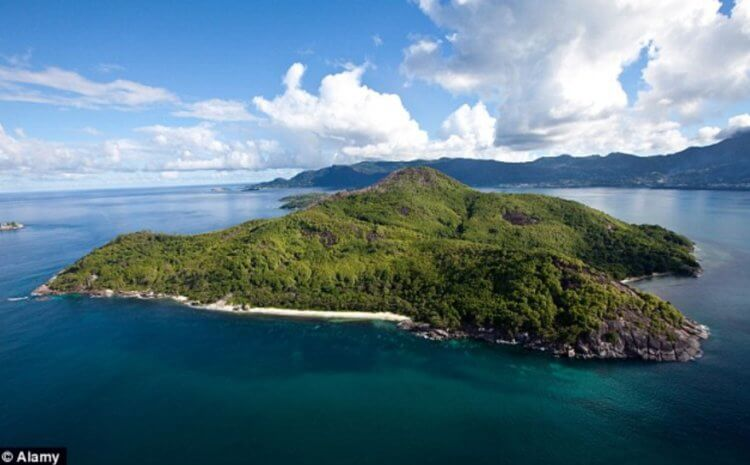 New Robinson: a man bought a desert island and created a piece of paradise 3