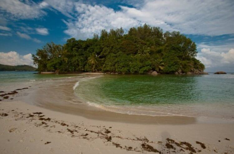 New Robinson: a man bought a desert island and created a piece of paradise 5