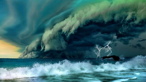 New disease Apocalyptic warning: The pandemic will have a second wave that will wash away everyone 8