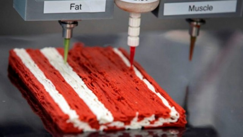 Mealworms, insect flour and test tube milk and meat: new generation food will appear on a mass scale in just two years 1