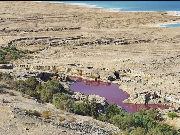 """Lake water """"Mysteriously"""" turned red near the Dead Sea in Jordan 2"""