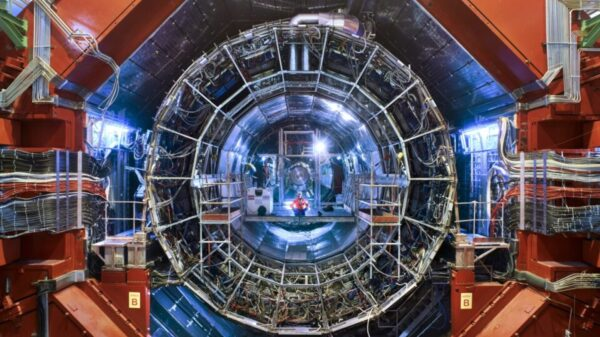 Scientists from CERN have received evidence of the existence of the fifth force of nature 8